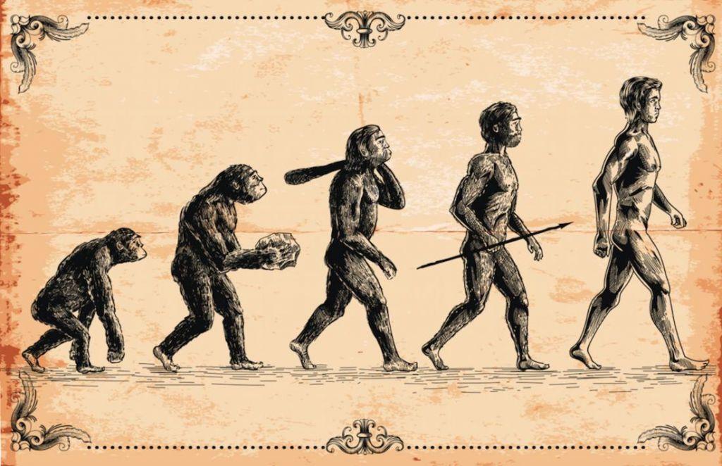 Почему нам придется переписывать учебники по истории эволюции человека?
